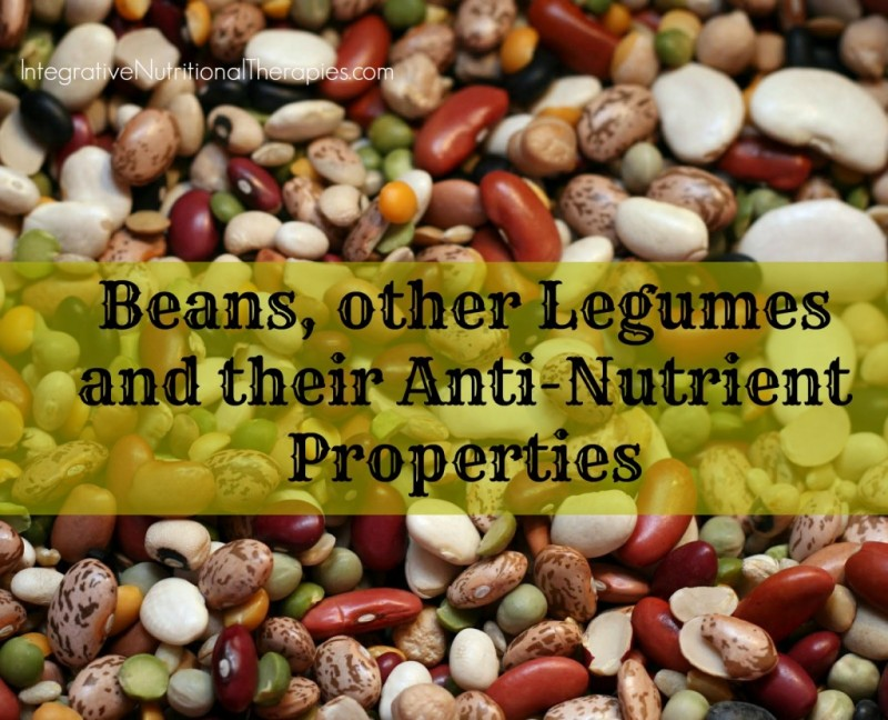 Beans, other Legumes and their Anti-Nutrient Properties