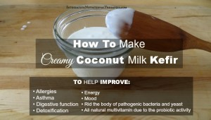 Coconut Milk Kefir