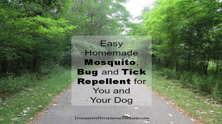 Easy Homemade Mosquito, Bug and Tick Repellent for You and Your Dog