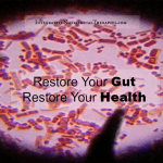 Restore Your Gut Restore Your Health: IBS, Leaky Gut, Crohns, Ulcers, Autoimmune, Depression, ADD, Autism and More