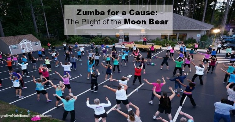 Zumba for A Cause: The Plight of the Moon Bear