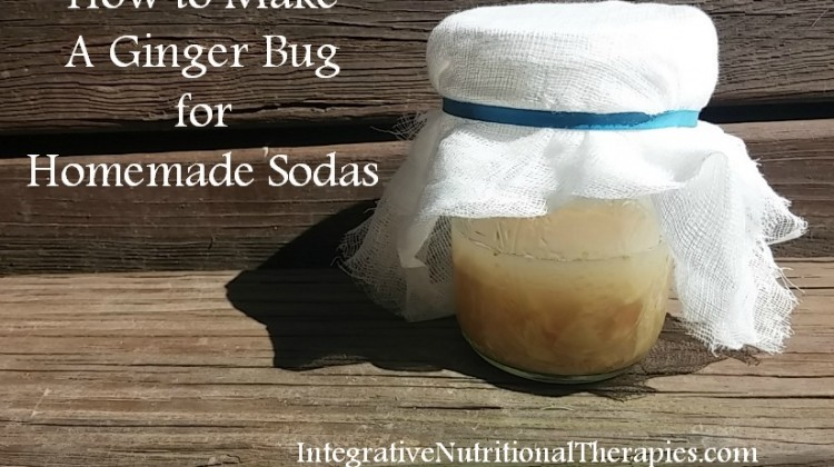 How to Make A Ginger Bug for Homemade Sodas