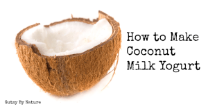 How-to-Make-Coconut-Milk-Yogurt