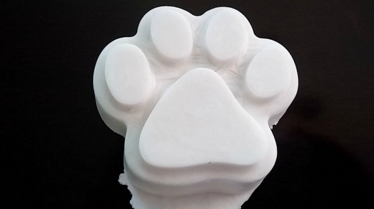 Coconut Milk Frozen Paws Treat