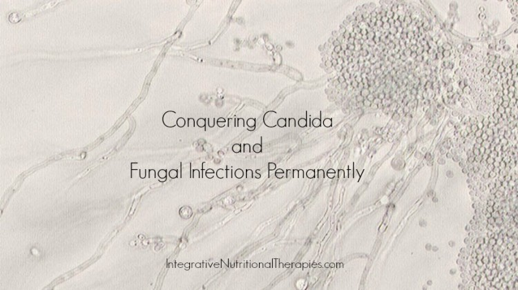 Conquering Candida and Fungal Infections Permanently